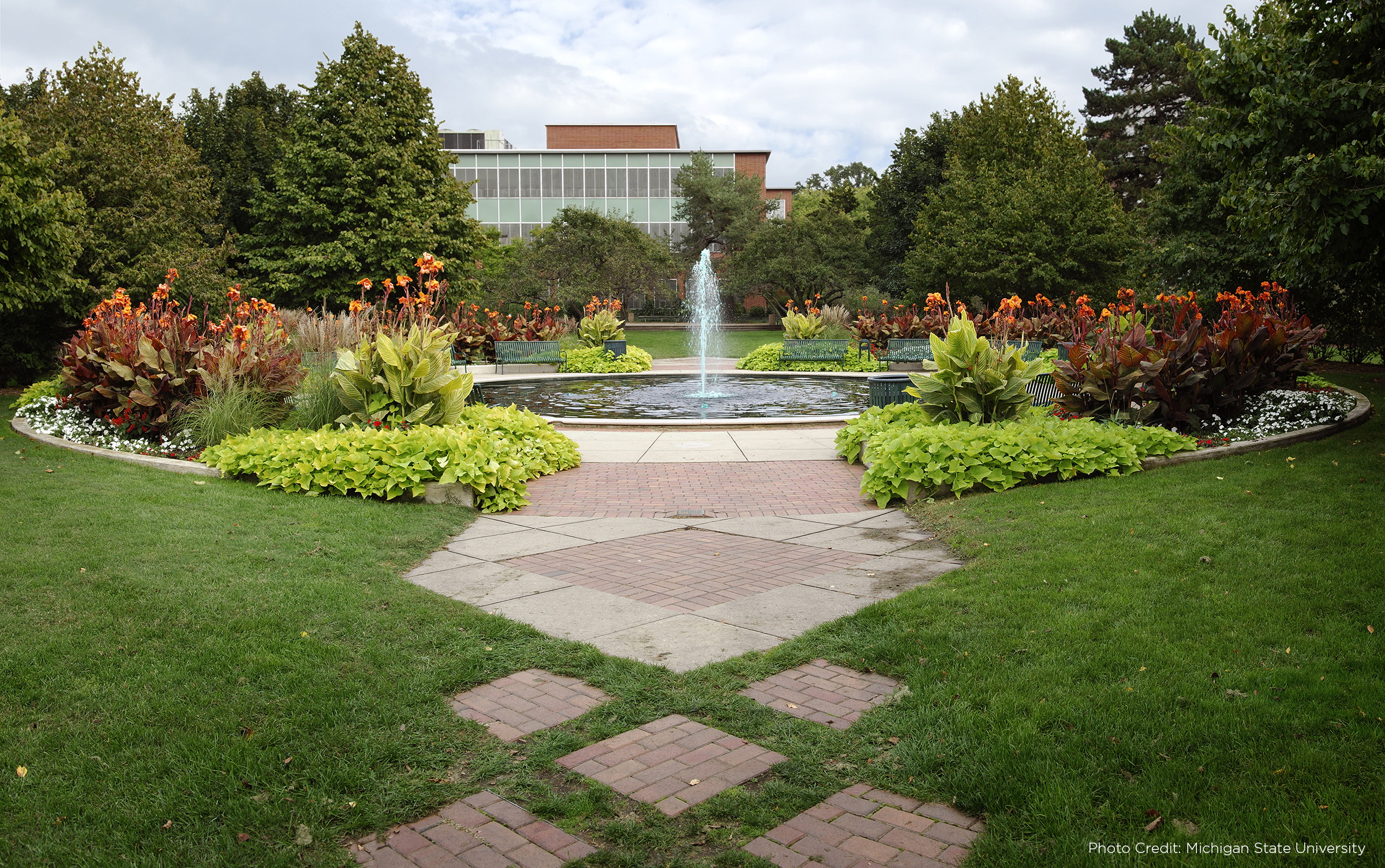 Pathway leading to a fountain on Michigan State University's campus